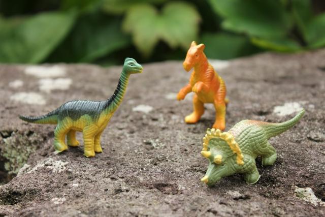 恐竜について英語で調べてみよう