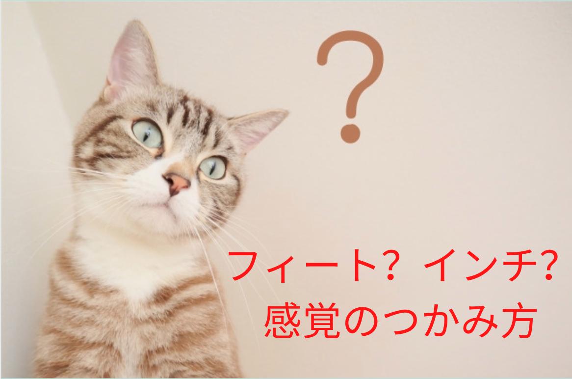 知っておくと便利な単位の違い ~ インチ、フィート編